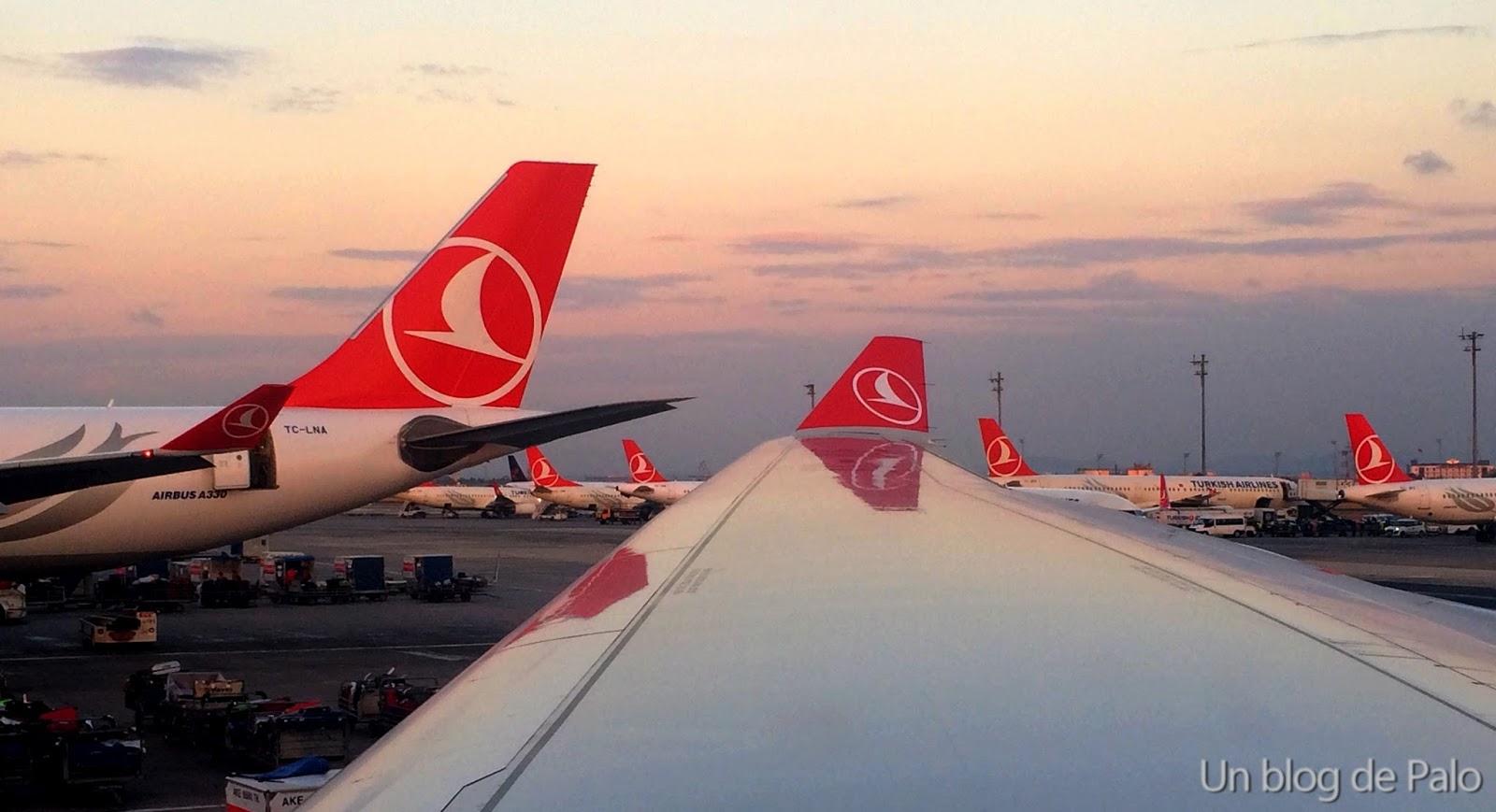 Volar con Turkish Airlines: bueno, bonito y barato