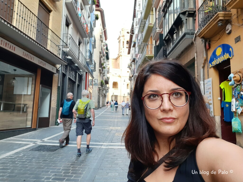 Paseando por Pamplona