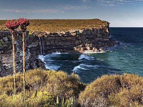 Viaje a Australia: todos los parques naturales para visitar