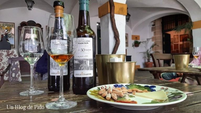 Cata de vinos Tradición en el patio de la bodega