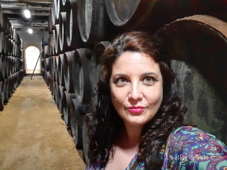 Las bodegas del Museo del Moscatel