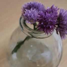 bouquet de ciboulette