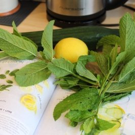 concombre citron menthe et livre