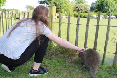 Perrine et un wallaby au zoo du Cerza