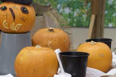 Atelier sculpture pour citrouilles d'Halloween