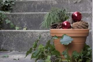 pommes de pin pour décoration de Noël