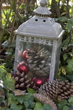 Lanterne et pommes de pin