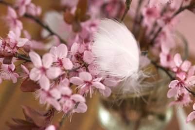 Bouquet de fleurs de prunus pour une jolie table pour pâques.