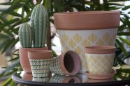 Cache pot Truffaut pour Cactus d'intérieur.