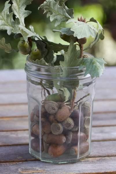 Décorer des pots de confiture avec des branches de chêne