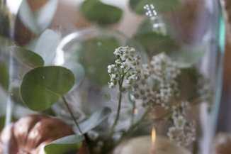 Mise en place du chemin de table avec des coloquintes et des fleurs sauvages