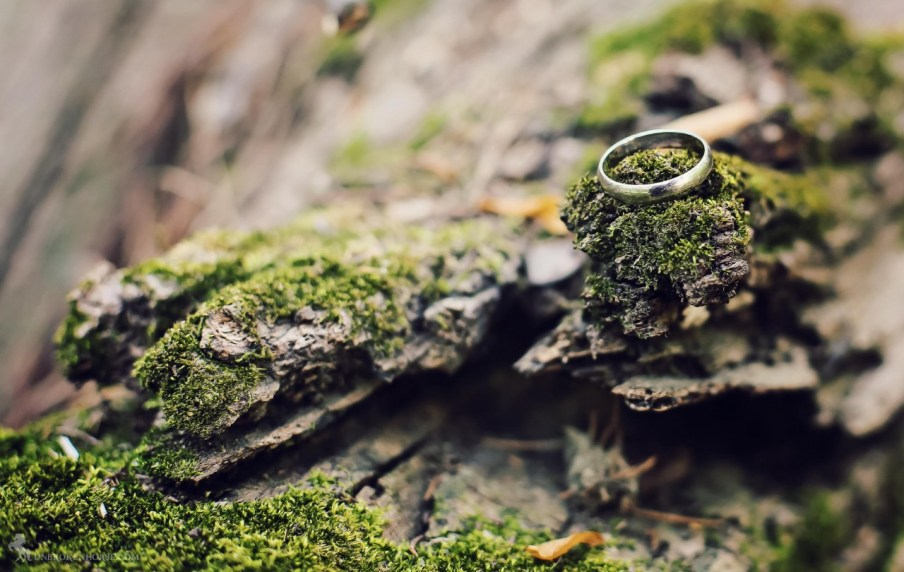 I only had my wedding ring on me. Perfect natural setting for a ring shot. Couldn't help myself.