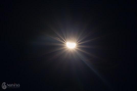 SuniraPhotography.com-IMG_3467