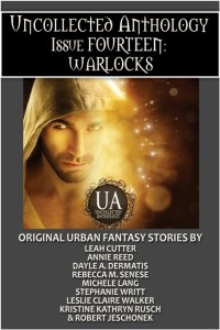 Book Cover: Warlocks Bundle