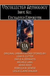 Book Cover: Enchanted Emporium Bundle