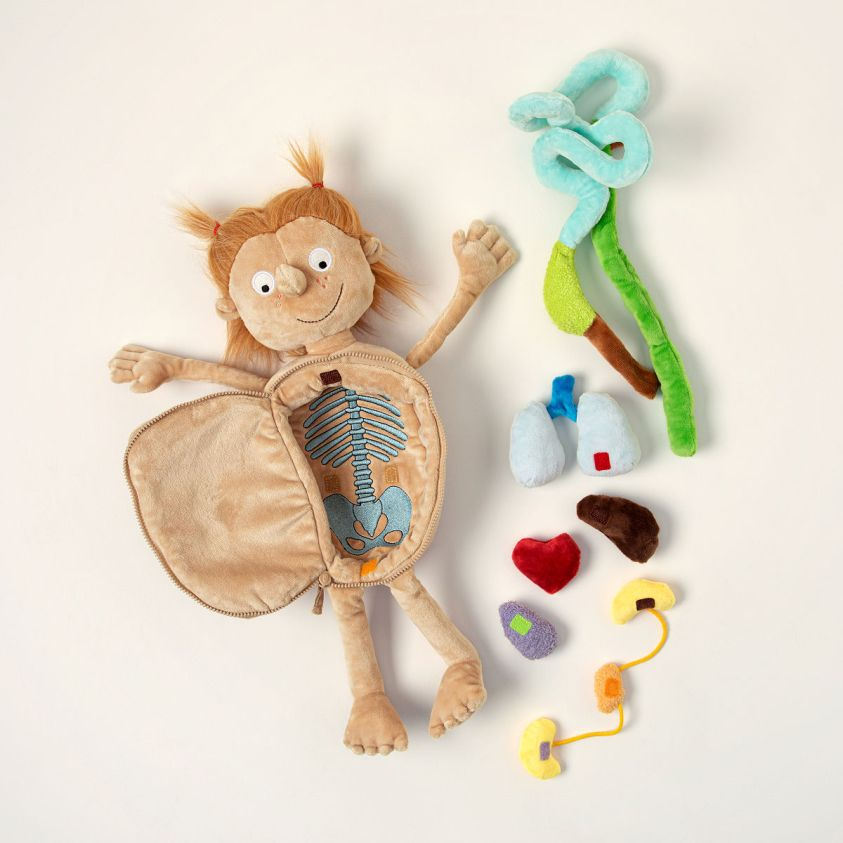 Little Patient | Doctor Doll, STEM, Anatomical Toys ...