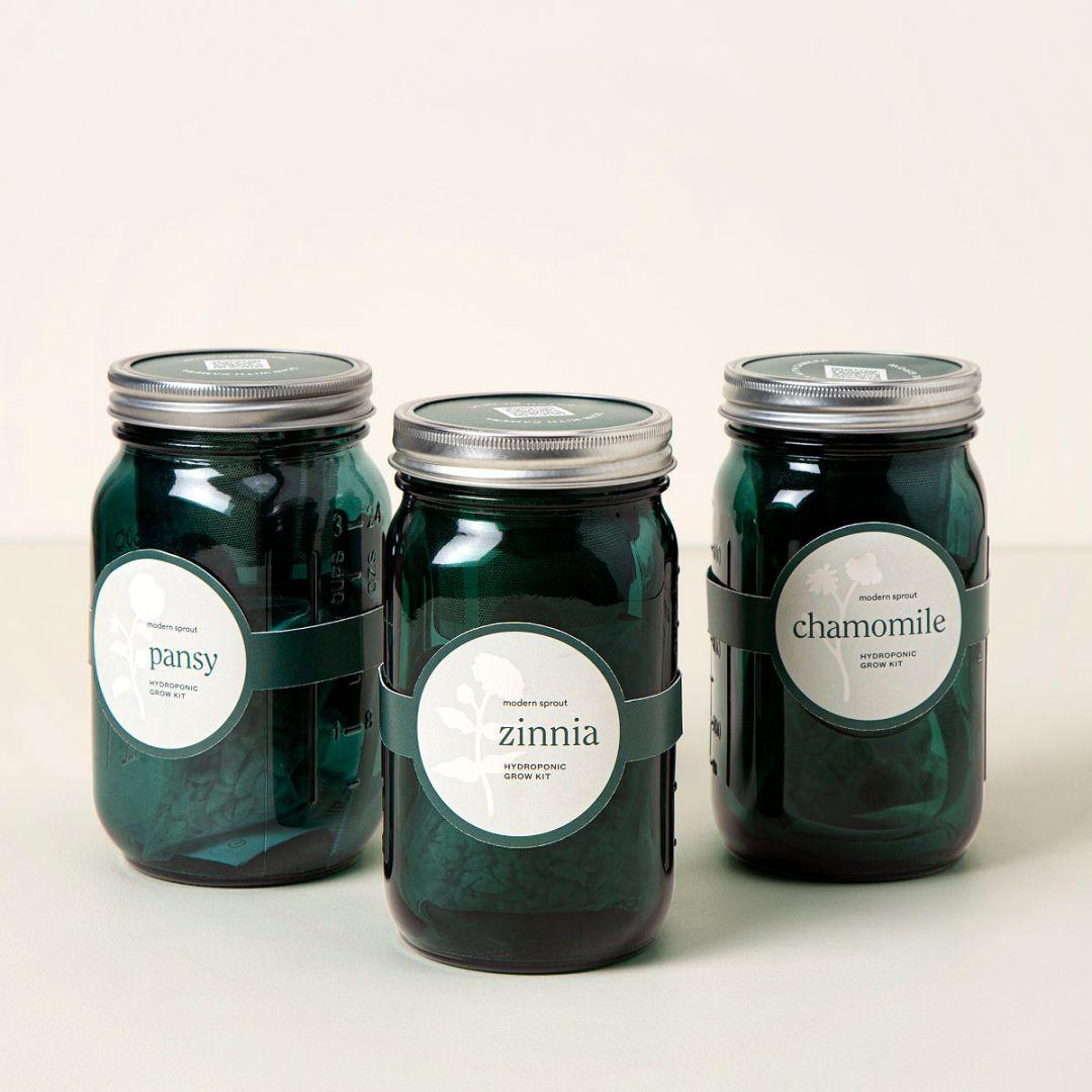 Image result for jar mason for plant