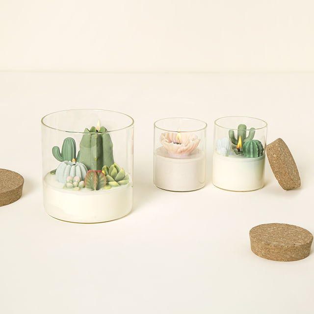 Terrarium Candle | Cactus Candles, Flower Candles | Uncommon Goods