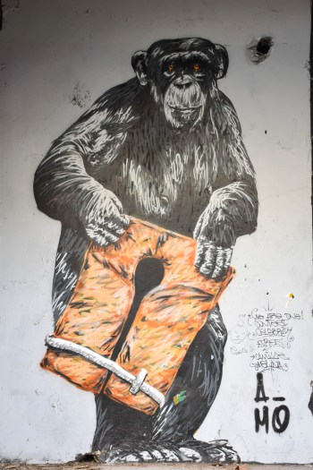 Street art singe à Darwin ville de bordeaux_