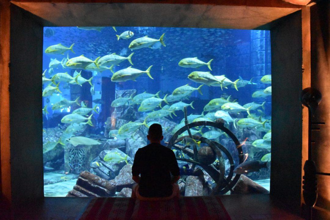 Aquarium Atlantis de Dubai