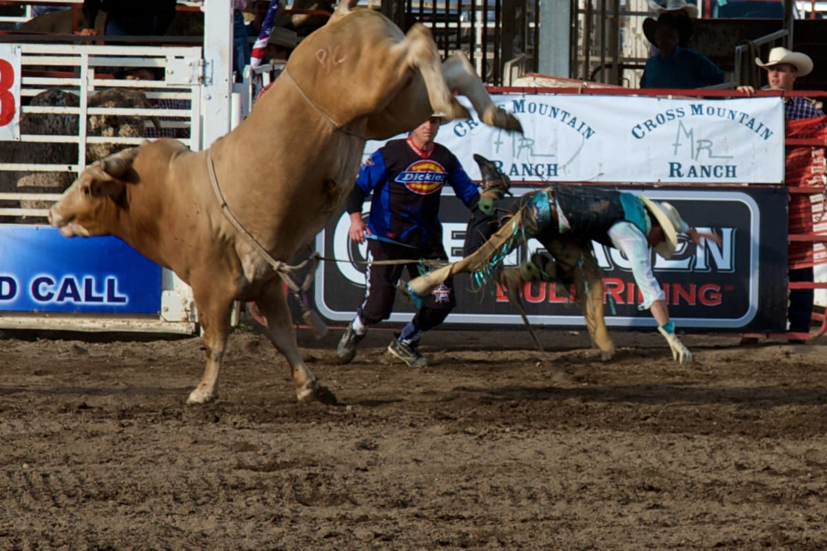 Pro Rodeo Returns To Steamboat Springs Colorado Travel Blog