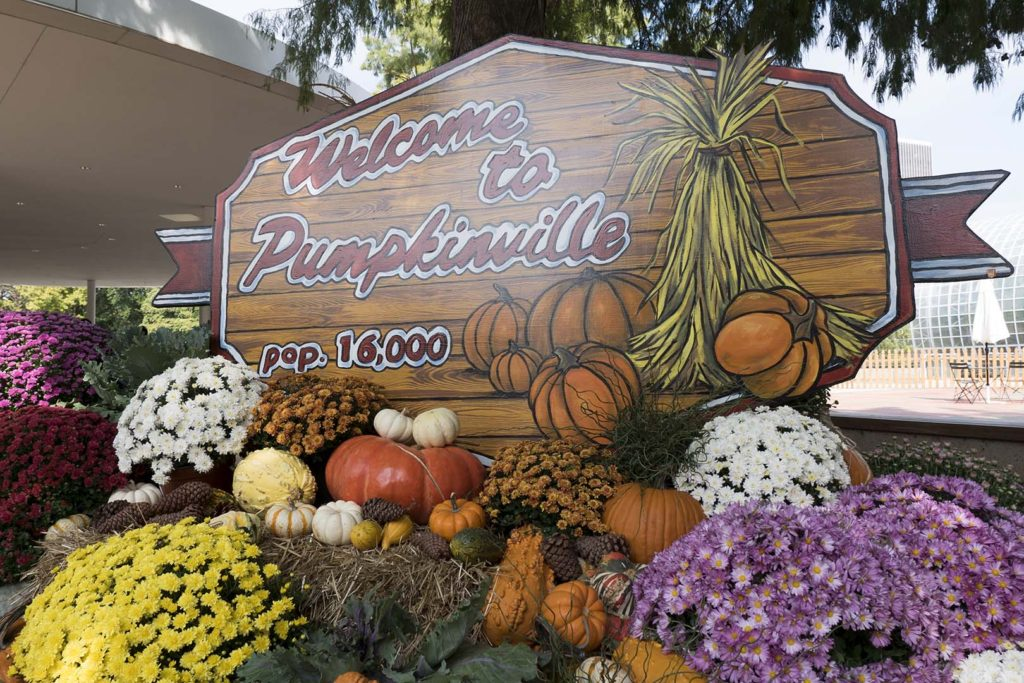 Welcome to Pumpkinville sign - photo by Dennis Spielman