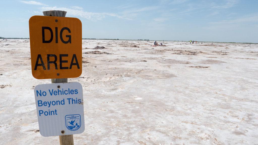 Dig Area at the Great Salt Plains State Park - photo by Dennis Spielman