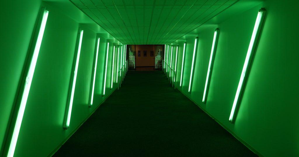 The Underground's Green Tunnel - photo by Dennis Spielman