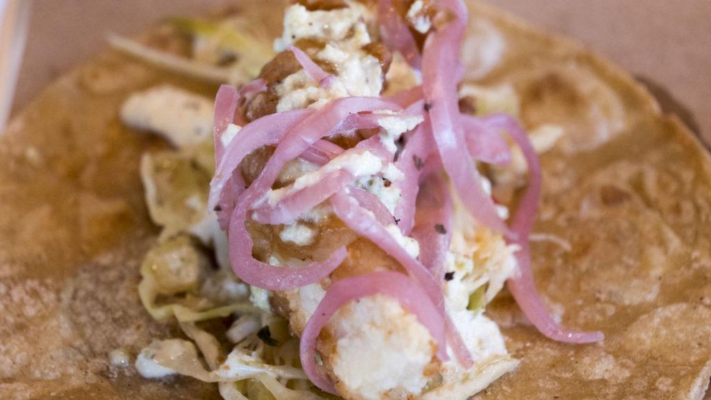 Taco at OSO - photo by Dennis Spielman