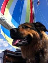 Finja liebt segeln...