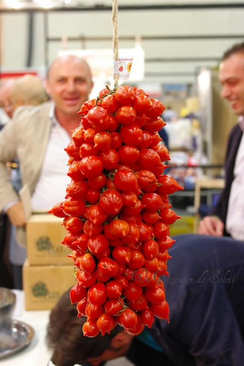 Pomodorini del Piennolo, tomates en grappe du Vésuve. Tout savoir : caractérisques, culture, usages, adresses...