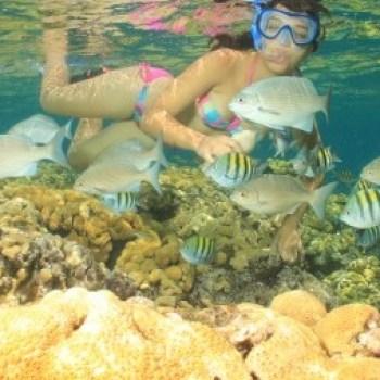 varadero snorkeling