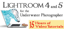 Lightroom 4 and 5 for the Underwater Photographer