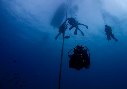 Blog e notizie Underwater Wonder