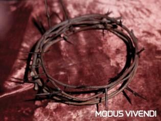 MV-Handcrafted-Line-Conseptual-Photos-With-Logo (12)