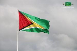 Golden Arrowhead Guyana