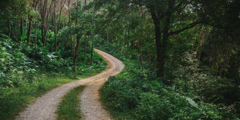 The back roads of Santa Marta, Colombia © | Shutterstock