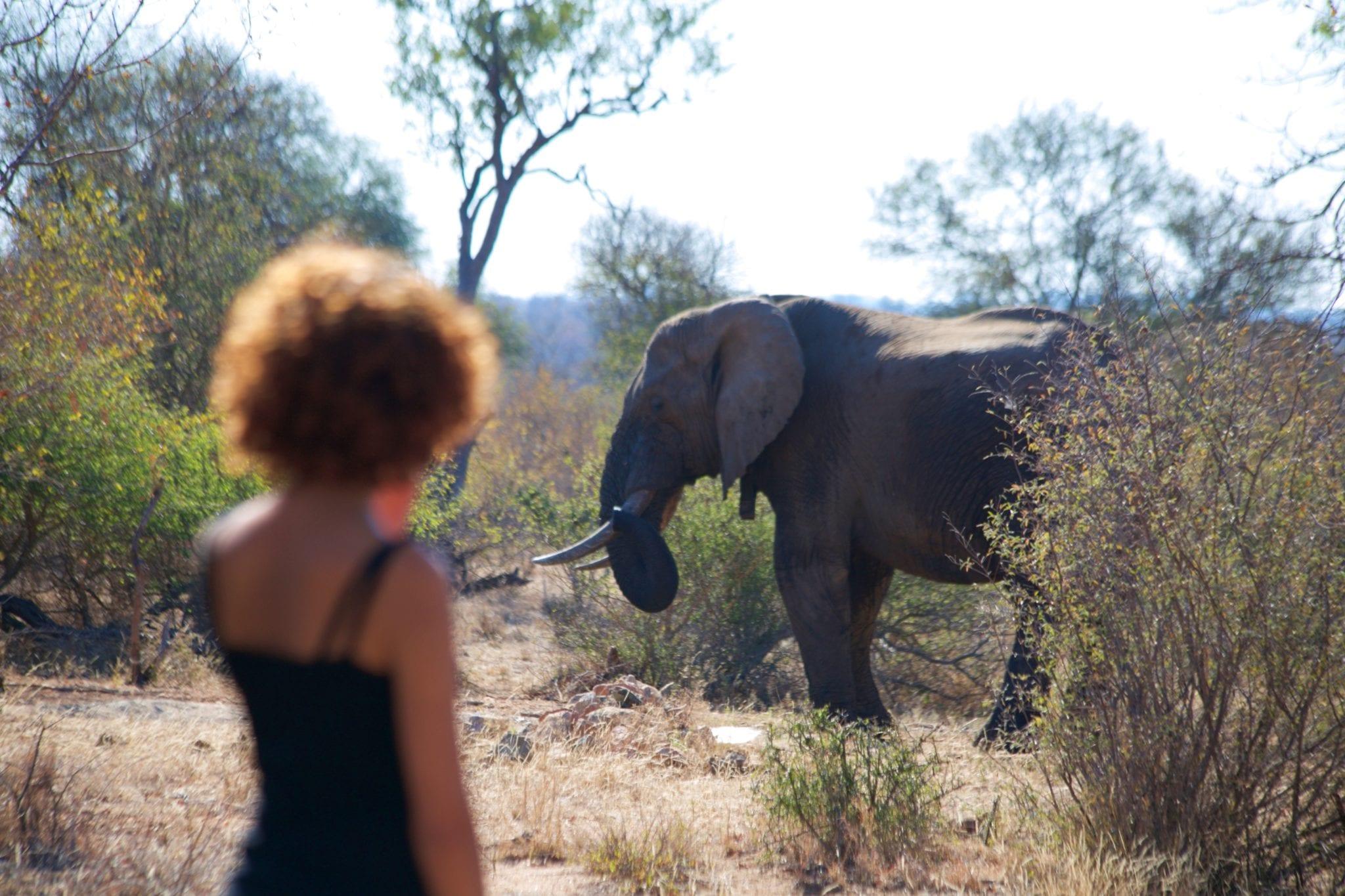 The Woman Saving Ethiopia's Wildlife