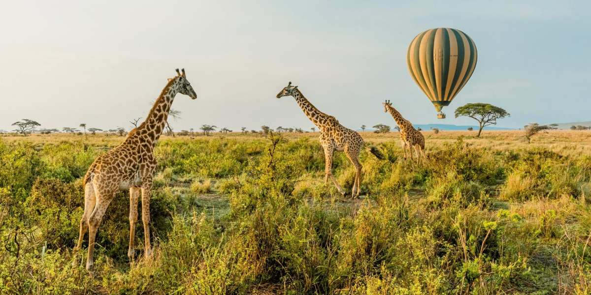 A hot air balloon floats over the Serengeti in Tanzania | © Shutterstock