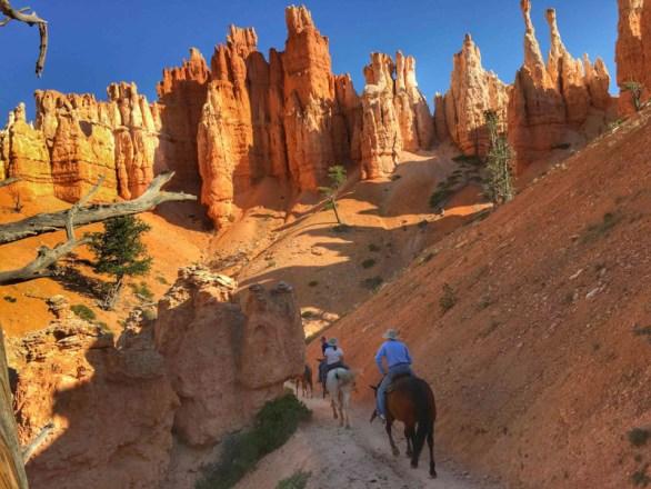 Bryce Canyon - 00048