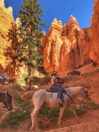 Bryce Canyon - 00054