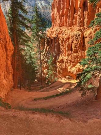 Bryce Canyon - 00055