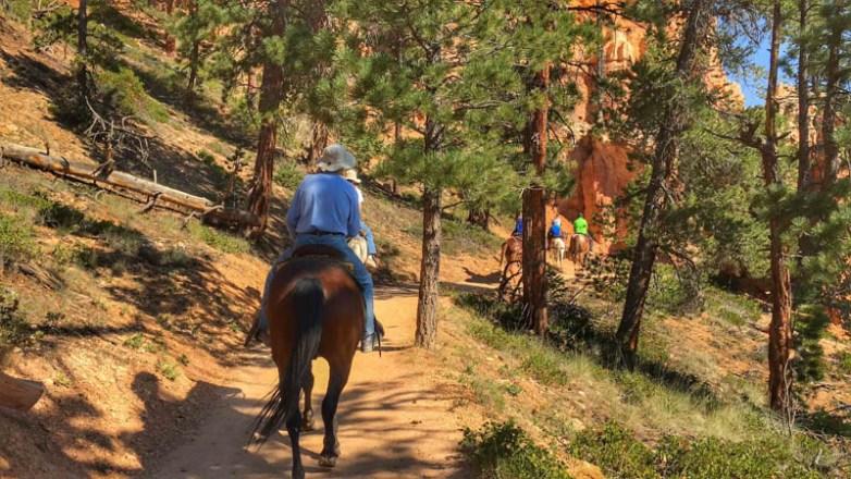 Bryce Canyon - 00060