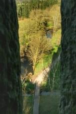 Cashel, Cahir et Blarney 13 Fev 2008 140