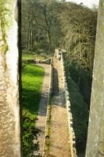 Cashel, Cahir et Blarney 13 Fev 2008 147