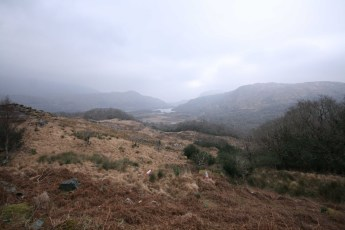 Ring of Kerry - 00020
