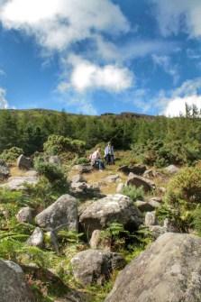 Glendalough - 00042