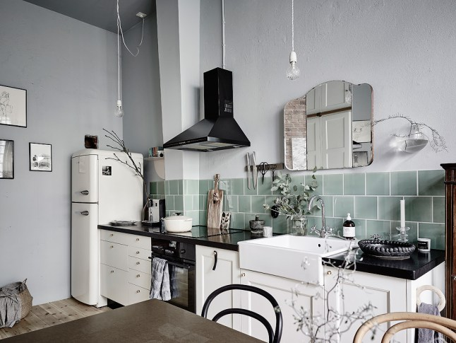 appartement scandinave25