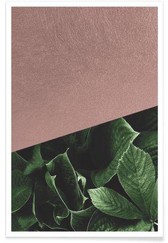 affiches-plantes-deco -11