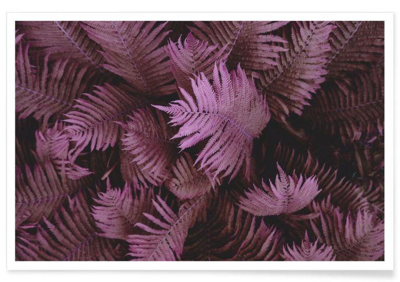 affiches-plantes-deco -14